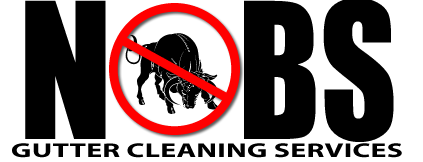 No BS Gutter Cleaning